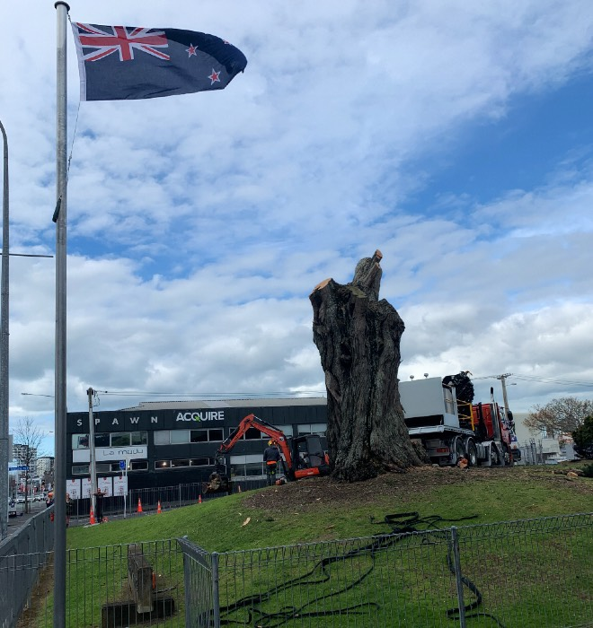 NZ Defence Force / Army tree