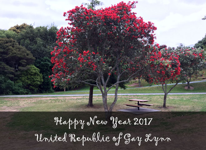 Happy New Year 2017 United Republic of Gay Lynn